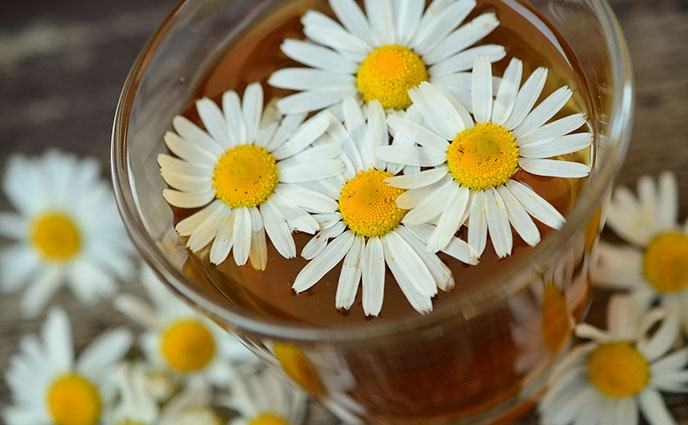 natural remedies for rosacea using chamomile